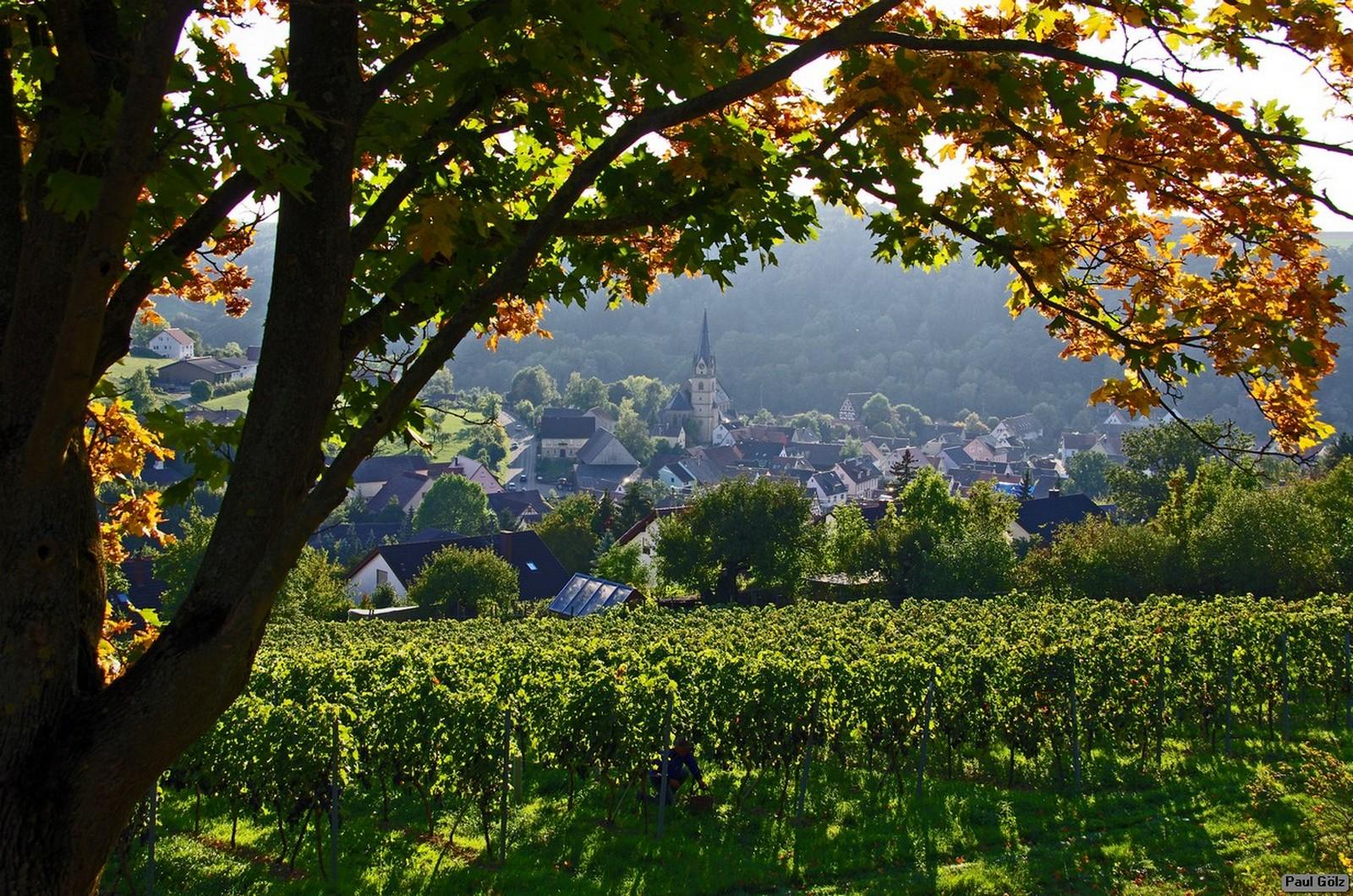 laudenbach-imgp2180-ps