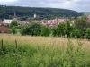laudenbach-imgp0870-ps