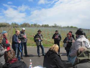Die Laudenbacher Weinerlebniswanderung findet am Sonntag, den 30. April 2017 statt. Sie verknüpft kulturelle, landschaftliche mit kulinarische Genüssen.