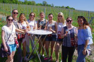Laudenbacher Weinerlebniswanderung 2019