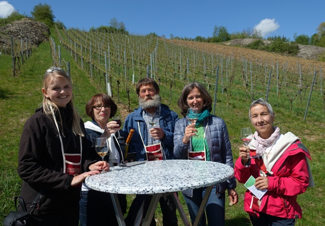 Eine Weinerlebniswanderung bei bestem Sonnenschein und Weingenuss mitten in der Natur!